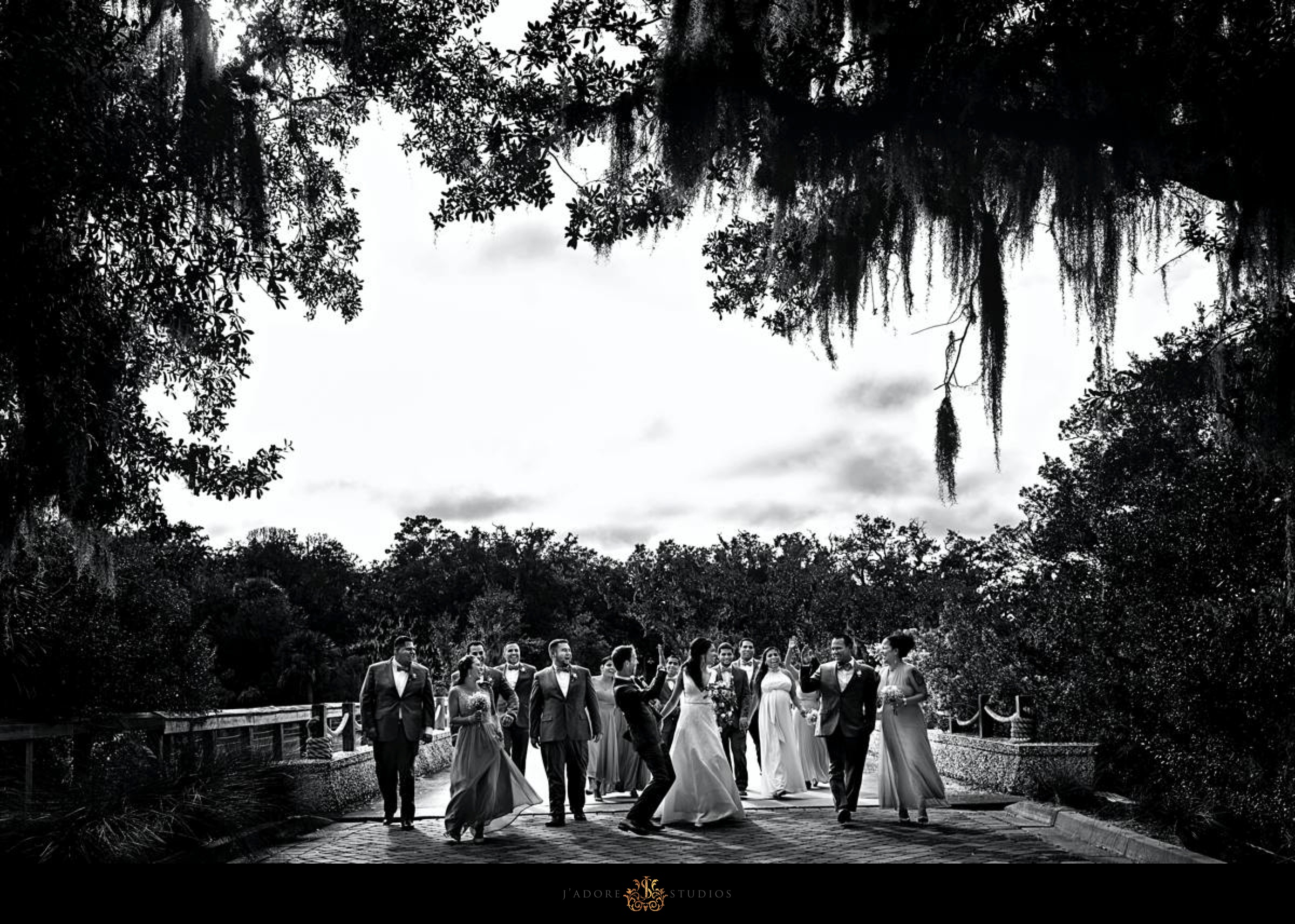 Bridal party having fun on the bridge under mossy trees at Oyster Bay Yacht Club